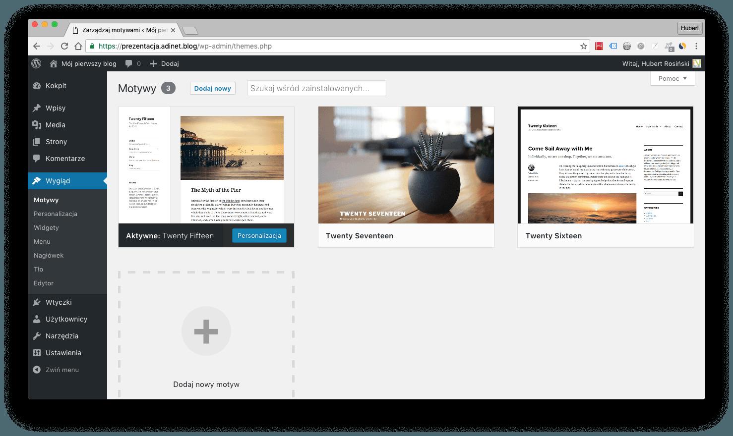 """Zrzut ekranu pokazujący zakładkę """"wygląd/motywy"""""""